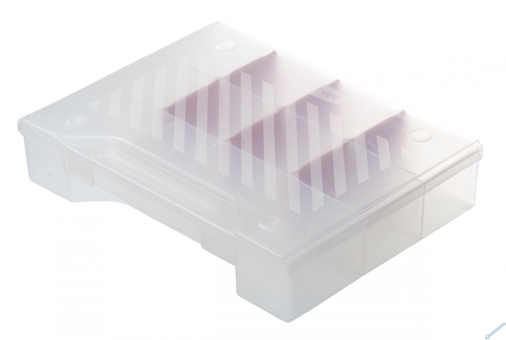 Průhledný box na drobnosti L