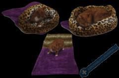Spací pytel pro kočky XL - fialová/leopard