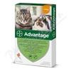 Advantage 40mg malé kočky+králíci spot-on 4x0. 4ml